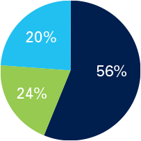 Pie chart visually showing percantages of the Growth option. 56% Domestic Equity Vanguard Total Stock Market Index (VSMPX), 24% Fixed Income Vanguard International Stock Index (VTIAX) and 20% International Equity Vanguard Total Bond Market Index (VBMPX)