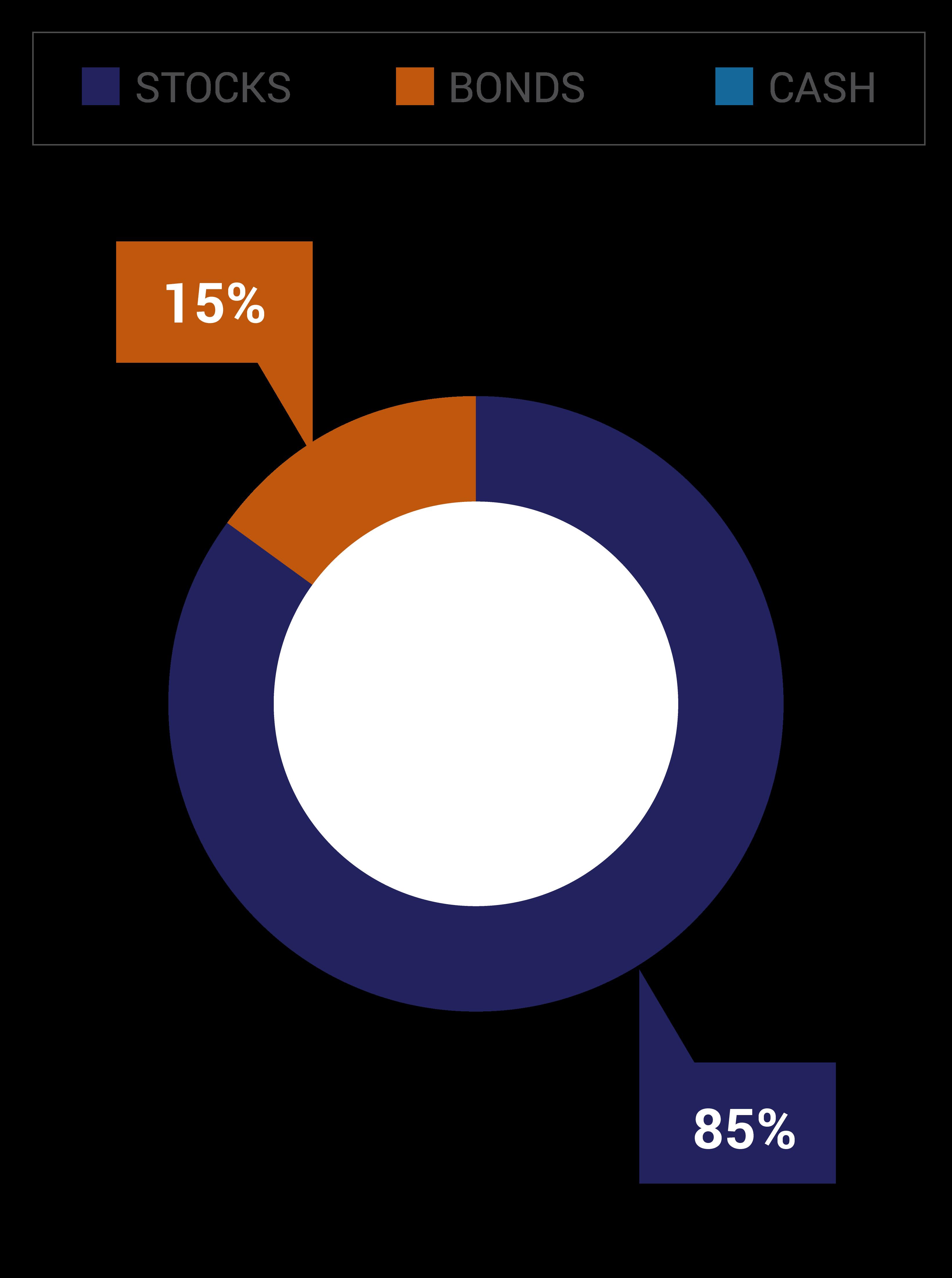 The Aggressive Portfolio Option consists of 85% stocks and 15% bonds.