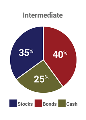 Intermediate Investment Option Pie Chart 35% stocks 40% bonds 25% cash